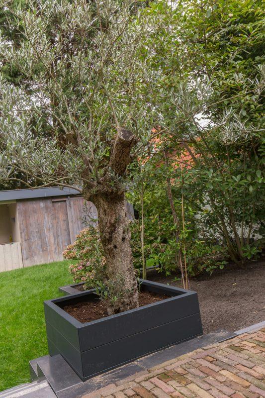 Tuin met exclusieve beplanting te Bloemendaal