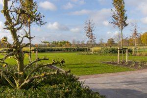 Grote tuin in Ederveen