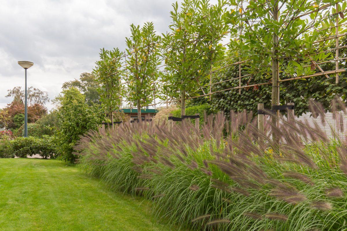 Kleurrijke tuin in Scherpenzeel